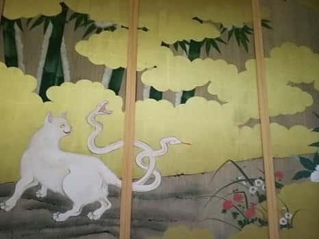 国上寺猫と蛇