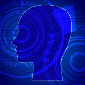 意識の恒常性維持機能