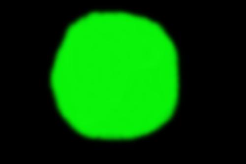 妖怪を見た話 緑色の丹光が妖怪の姿に変わった
